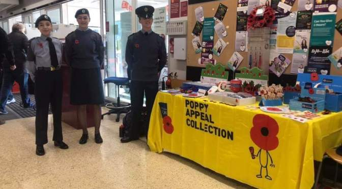 The 2019 poppy appeal
